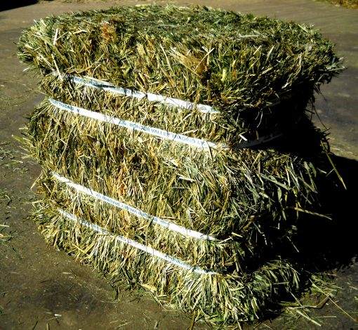 hay for sale near me